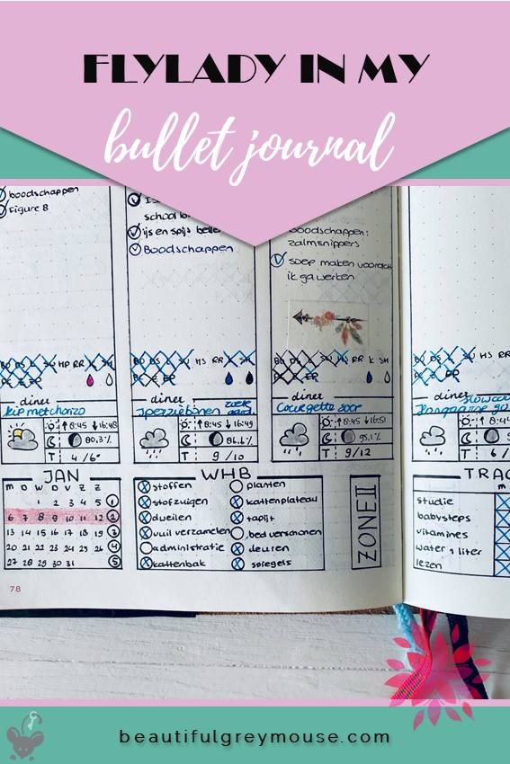 Flylady in my planner weekly