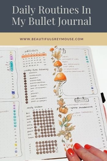 Flylady Daily Routines In My Bullet Journal Tracker