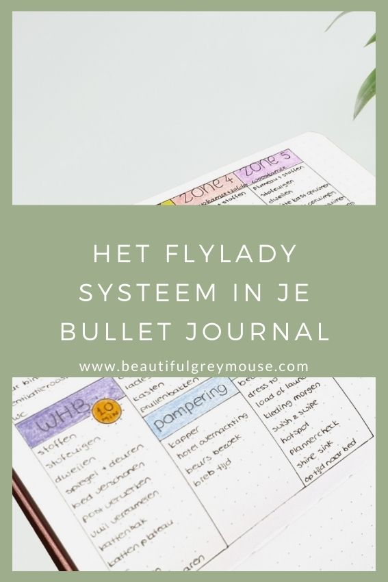 Flylady In My Bullet Journal Bullet Journal And Planner Blog