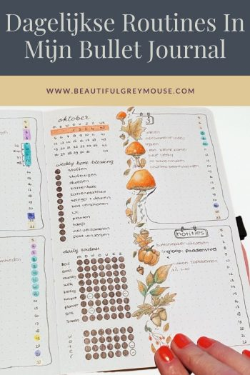 Flylady Daily Routines In Mijn Bullet Journal Tracker